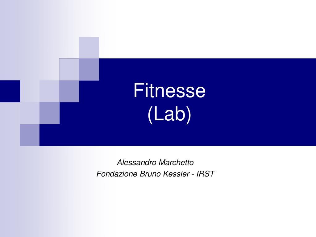 fitnesse lab l.