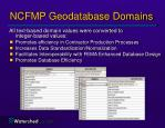 ncfmp geodatabase domains