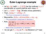 euler lagrange example