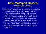 hotel waterpark resorts what s the future1