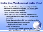 spatial data warehouse and spatial olap
