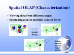 spatial olap characterization