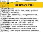 respira n trakt11