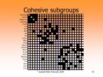 cohesive subgroups