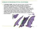 dokazi iz komparativne anatomije71