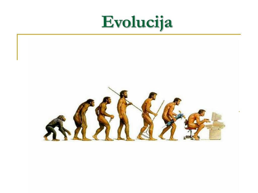 evolucija l.