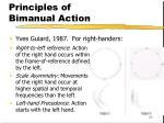 principles of bimanual action