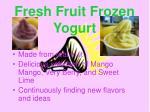 fresh fruit frozen yogurt