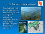 pollution in watershed