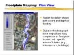 floodplain mapping plan view30