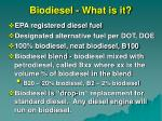 biodiesel what is it