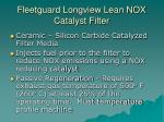 fleetguard longview lean nox catalyst filter