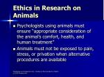 ethics in research on animals