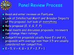 panel review process