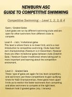 competitive swimming level 1 2 3 4
