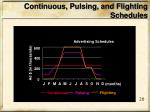 continuous pulsing and flighting schedules