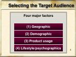 selecting the target audience