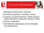 five levels of self regulation