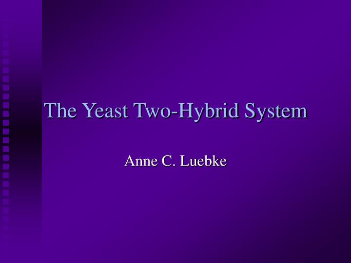 the yeast two hybrid system n.