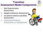 transition assessment model components