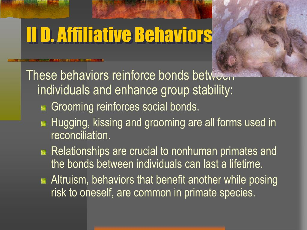 II D. Affiliative Behaviors