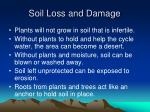 soil loss and damage49