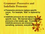 grammar possessive and indefinite pronouns