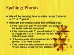 spelling plurals