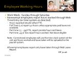 employee working hours