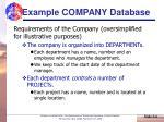 example company database