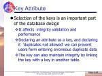 key attribute