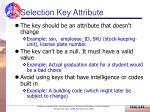 selection key attribute