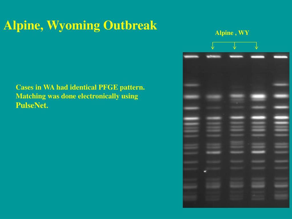 Alpine, Wyoming Outbreak