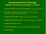 suwannee river drainage benthic community sampling in florida