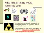 what kind of image would symbolize you