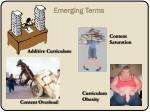 emerging terms