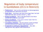 regulation of body temperature in bumblebees ch 6 in heinrich