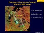detection of forest fires canada noaa avhrr image
