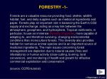 forestry 1