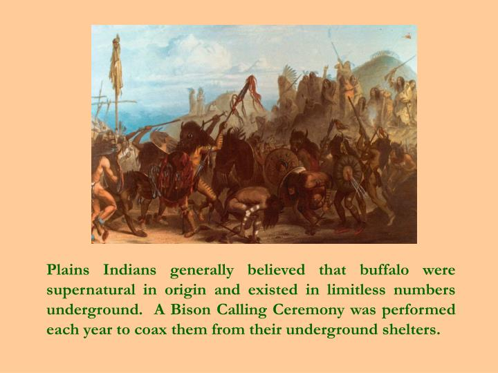Plains Indians generally believed that buffalo were supernatural in origin and existed in limitless numbers underground.  A Bison Calling Ceremony was performed each year to coax them from their underground shelters.