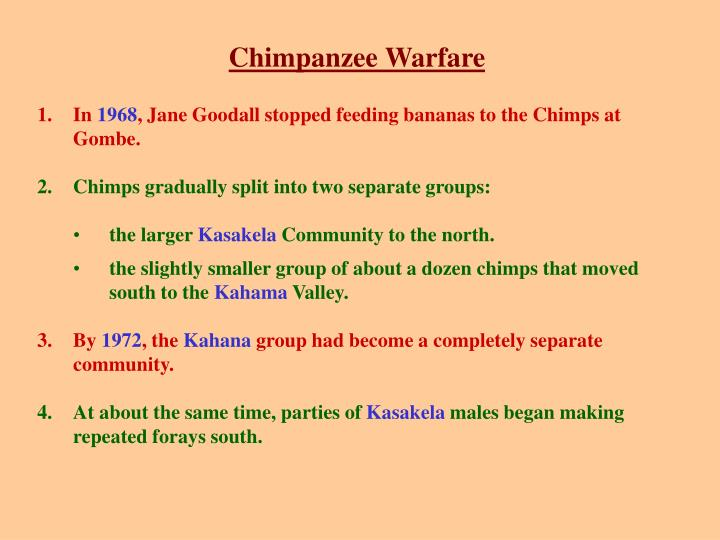 Chimpanzee Warfare