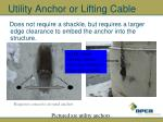 utility anchor or lifting cable