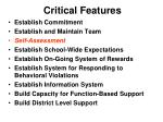 critical features55