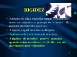 rigidez13