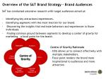 overview of the sat brand strategy brand audiences