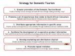 strategy for domestic tourism