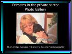 primates in the private sector photo gallery32