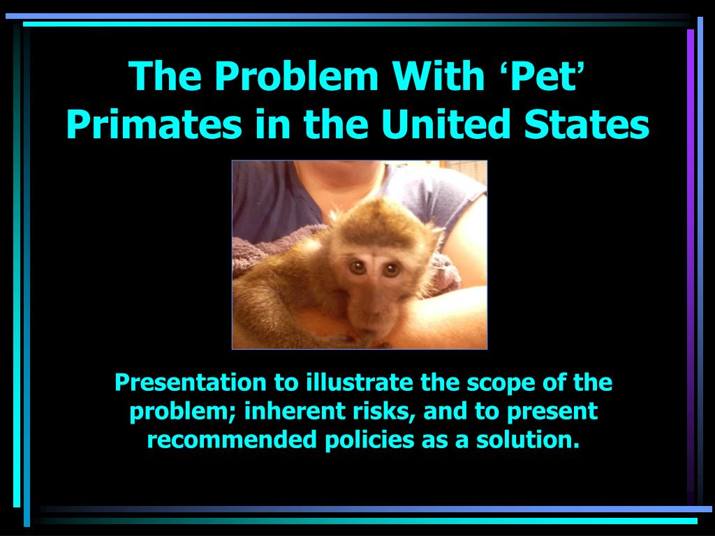 the problem with pet primates in the united states l.