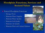 floodplain functions services and societal values