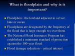what is floodplain and why is it important